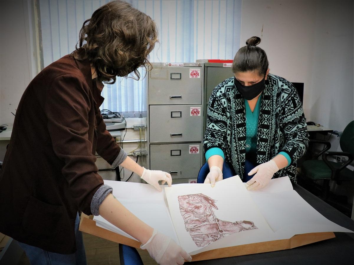 Área de Artes e Comunicação da UPF inscreve para oito cursos neste Vestibular