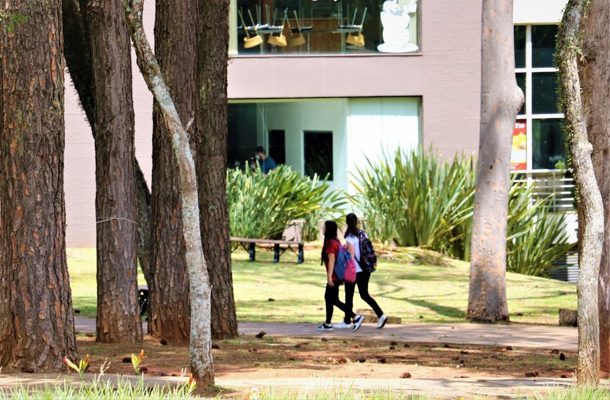 Vestibular de Verão UPF: inscrições encerram na próxima quarta-feira (17/02)