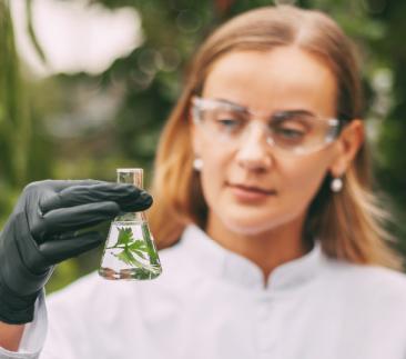MBA em Controle de Qualidade e Meio Ambiente: Gestão do Laboratório e da Indústria - 4ªed.