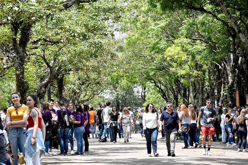 UPF divulga aprovados no Vestibular de Verão 2020