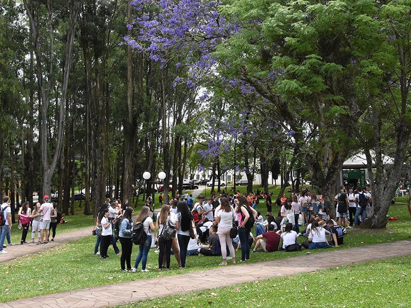 Vestibular Complementar de Verão UPF está com inscrições abertas